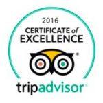 Trip Advisor - Certificate